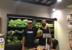 Pimiento Verde frutas orgánicas